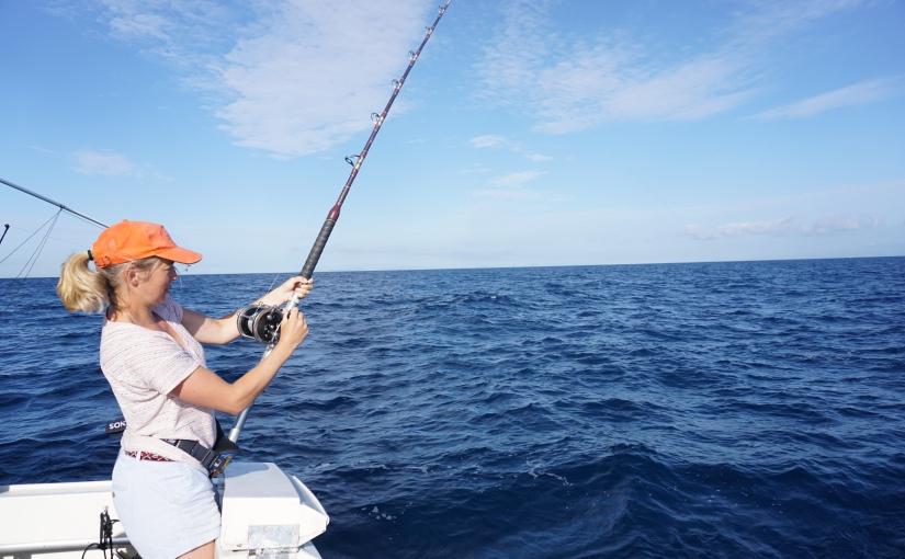 A la pêche au thonrouge
